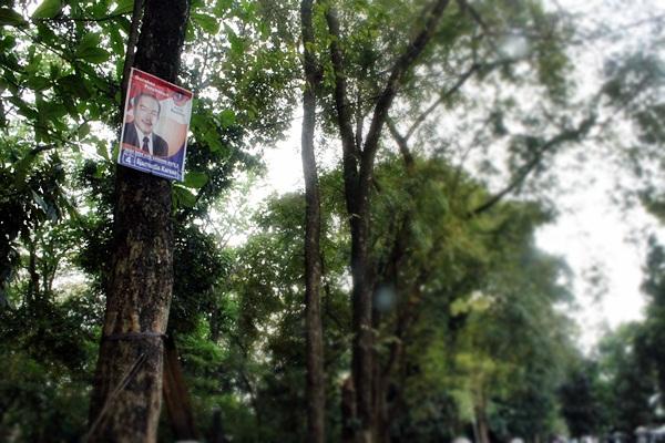 Salah satu atribut partai politik yang dipasang di pohon saat masa kampanye Pemilihan Umum 2014. (Agung Gunawan Sutrisna/JUMPAONLINE)